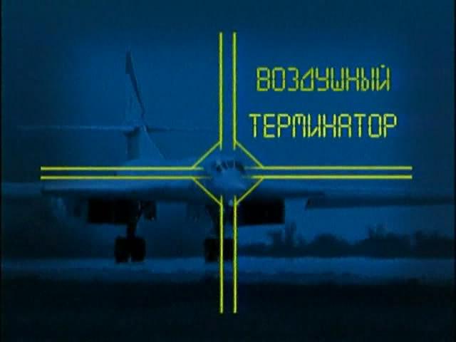 Ударная сила. Воздушный терминатор. Часть 15